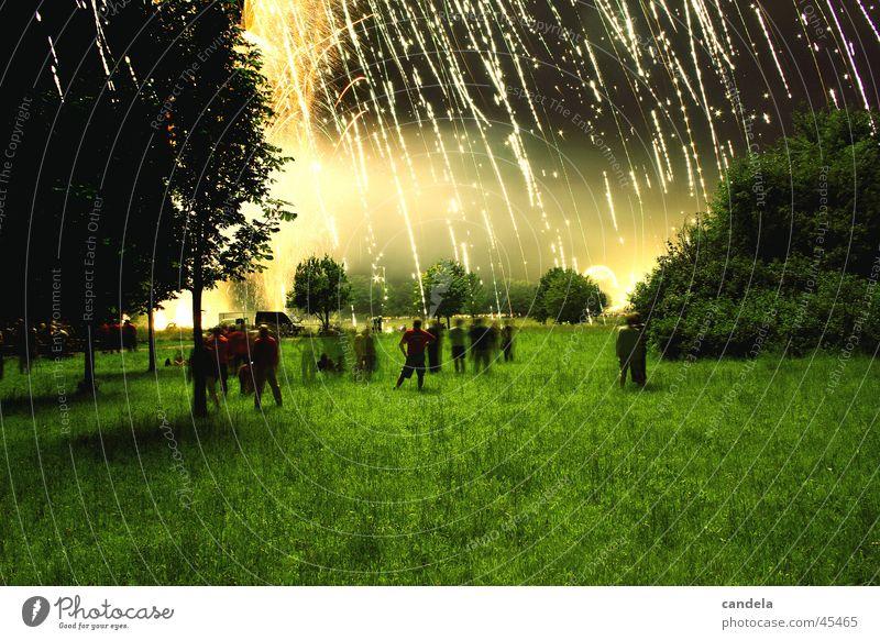 Goldregen Mensch Himmel Lampe dunkel Wiese Bewegung Menschengruppe Regen Feste & Feiern Brand gold Feuerwerk Veranstaltung Reaktionen u. Effekte Vordergrund
