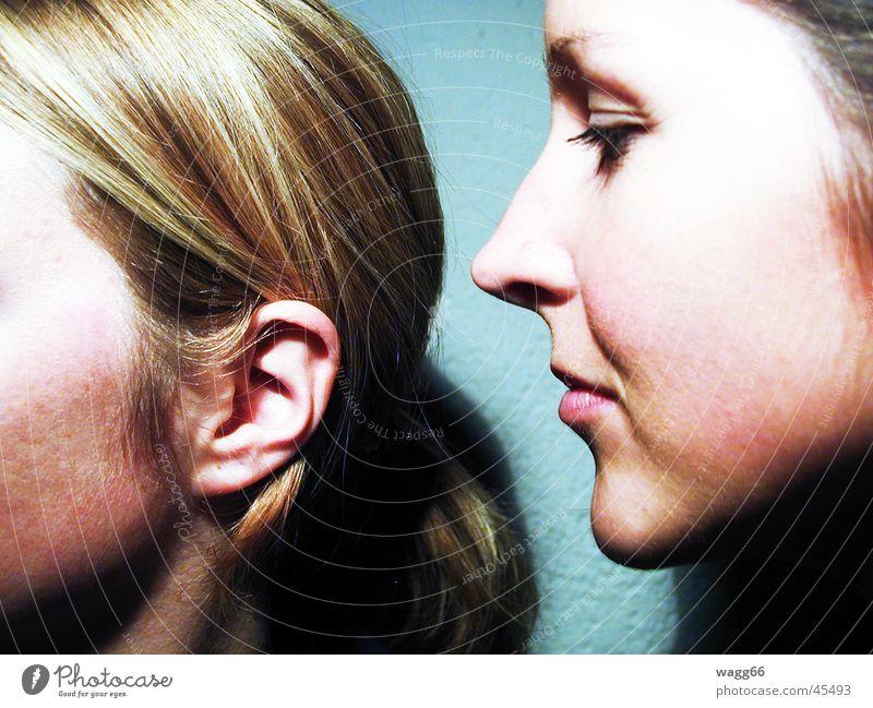 Sag mir was, ich höre! Flüstern sprechen Frau Nase gesichte Mund Ohr Auge geheimniss Haare & Frisuren Mensch
