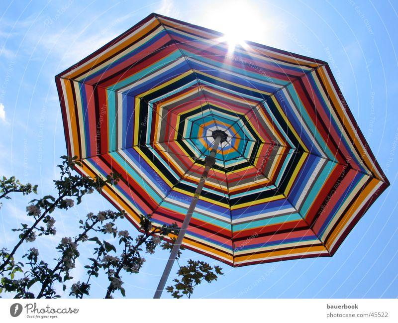 Balkon Sommer Freizeit & Hobby Apfelbaum Dinge Sonne bunter Sonnenschirm