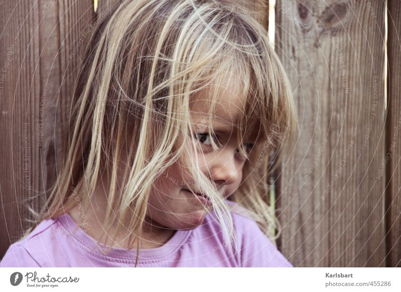 Blau Beerchen Mensch Kind Mädchen Auge Leben Bewegung Spielen Kopf Gesundheit blond Kindheit Lächeln lernen Freundlichkeit T-Shirt Bildung