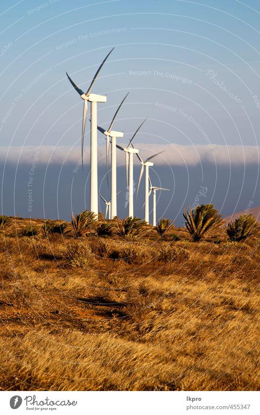 Windkraftanlagen und der Himmel Teller Ferien & Urlaub & Reisen Erneuerbare Energie Natur Pflanze Wolken Sturm Gras Hügel Architektur Fassade Metall Stahl