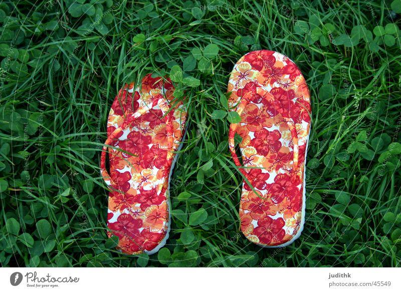 flippig oder floppig? grün rot Sommer Gras Schuhe Freizeit & Hobby Flipflops Schlappen Grasgeflüster