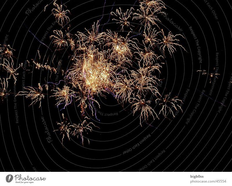 1. August Rakete Stil Feuerwerk Explosion
