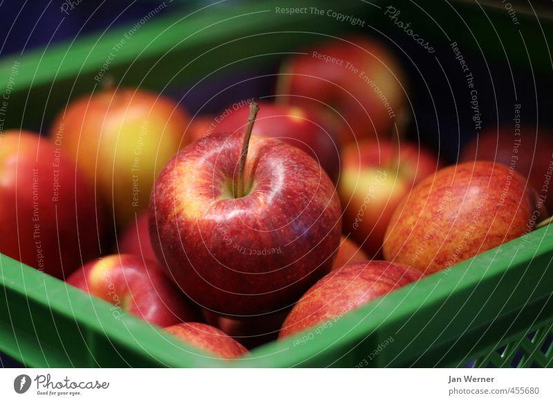 An apple a day ... rot Essen Gesundheit Lebensmittel Frucht glänzend frisch Ernährung süß rund lecker Frühstück Apfel Vitamin Mittagessen saftig