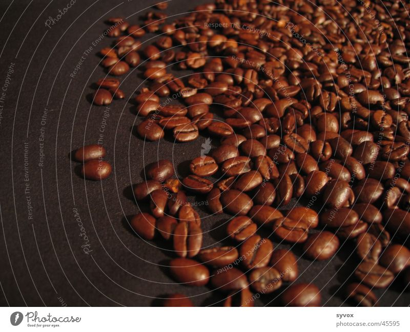 Kaffee Südafrika Espresso Bohnen Cappuccino Ernährung Kaffebohnen