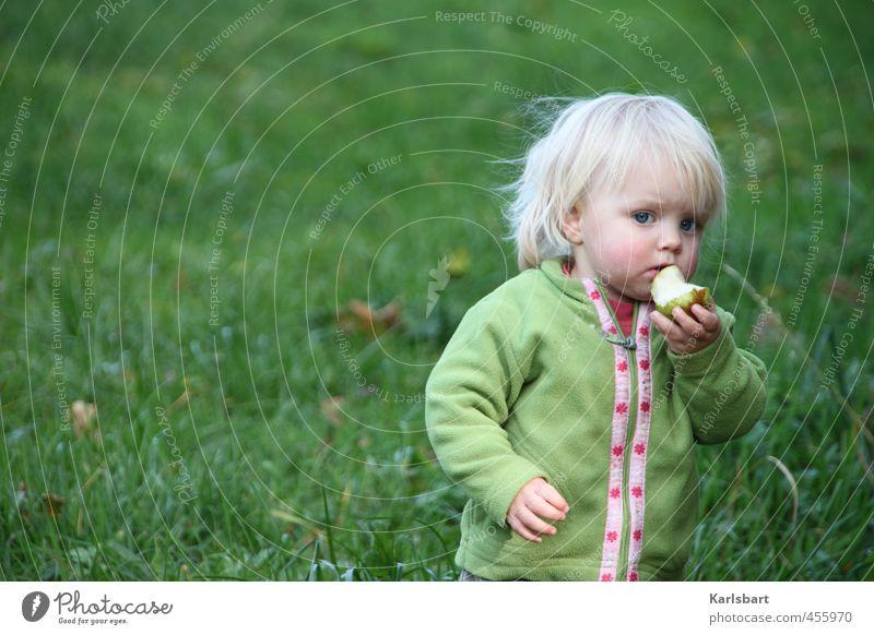 Apfel Bäumchen Mensch Kind Natur Mädchen Wiese Herbst Bewegung Gras Gesunde Ernährung Essen Gesundheit Lebensmittel Frucht blond Kindheit lernen