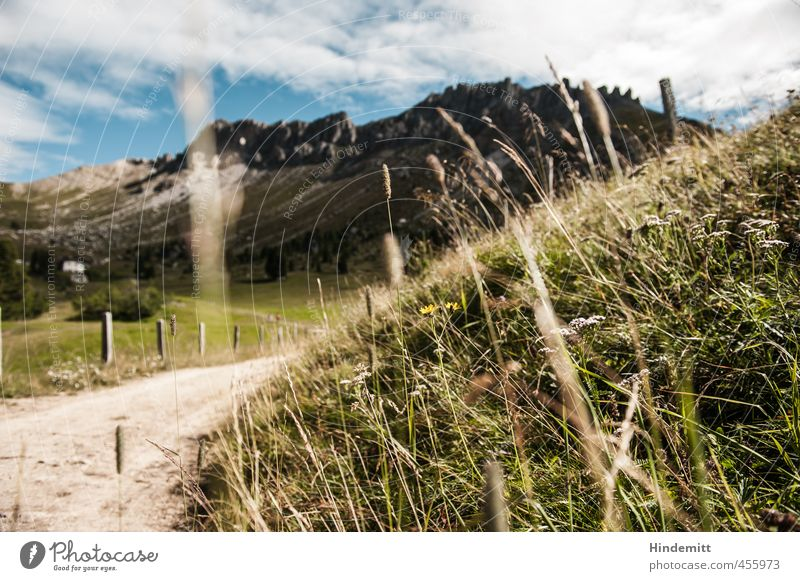 """""""Ich habe eine unerschöpfliche Lust zum Nichtstun ..."""" Ferien & Urlaub & Reisen blau grün weiß Blume Wolken Wald Berge u. Gebirge Wiese Gras Wege & Pfade grau"""