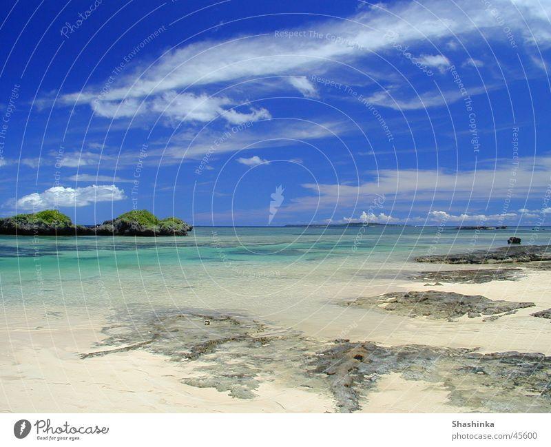 Subtropische Natur Strand Ferien & Urlaub & Reisen Insel Japan Blauer Himmel Nationalpark Korallen Musikinstrument Shamisen Okinawa Iriomote Hoshizuna Beach