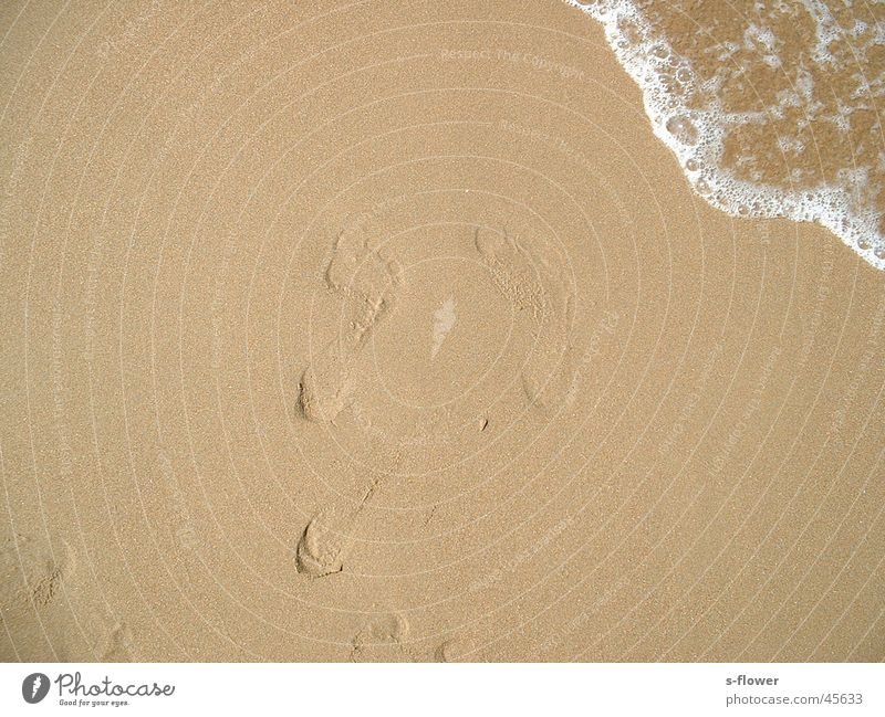 Barfuss im Sand Wasser Meer Strand Europa Barfuß Sandabdruck