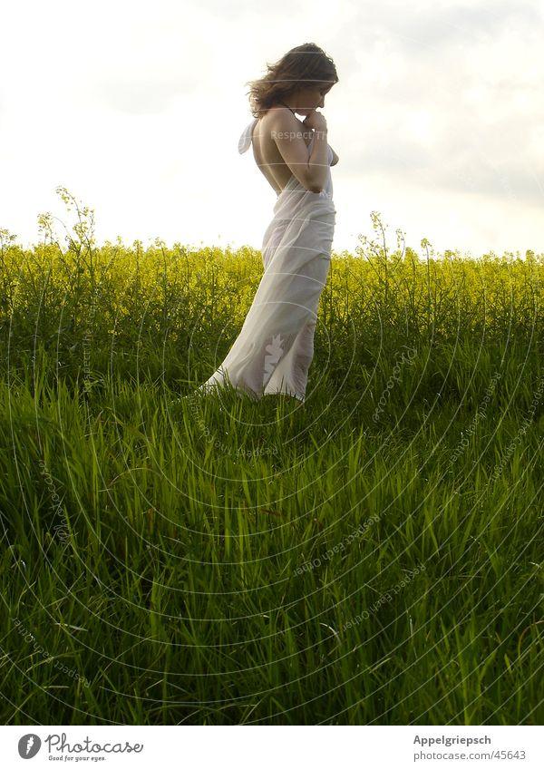 Morgen Frau Natur ruhig Feld Hoffnung Sehnsucht Frieden einzeln Gebet Junge Frau Raps Zärtlichkeiten Feldrand Vor hellem Hintergrund