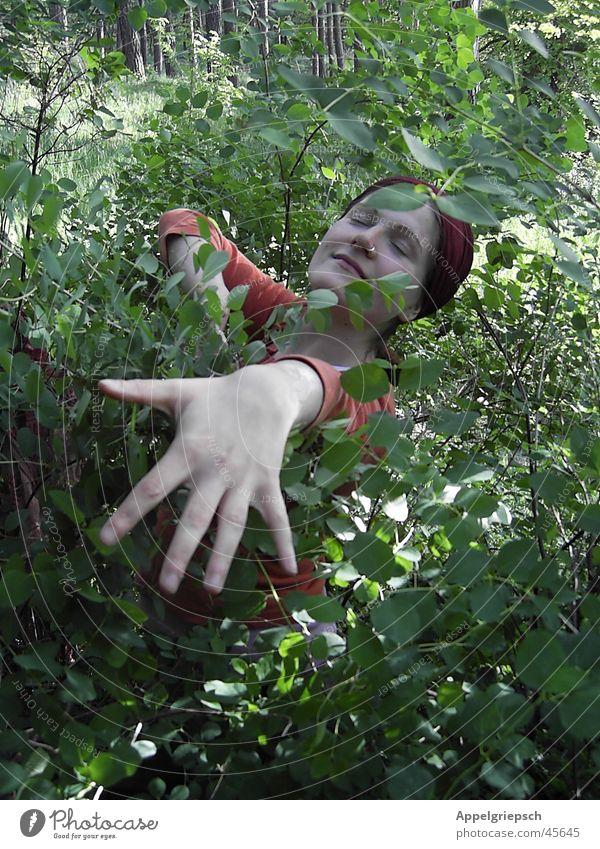 Fühlen Frau Hand Wald Leben Gefühle Glück träumen Sträucher genießen harmonisch blind Intuition Fliederbusch