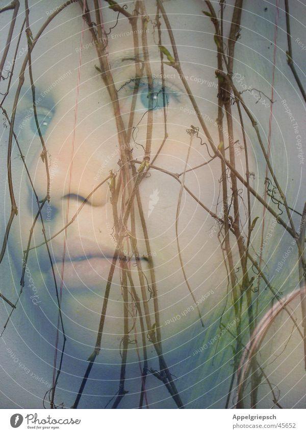 Alleine Frau Winter ruhig Einsamkeit Gefühle Frühling träumen Gedanke Wein Weinranken