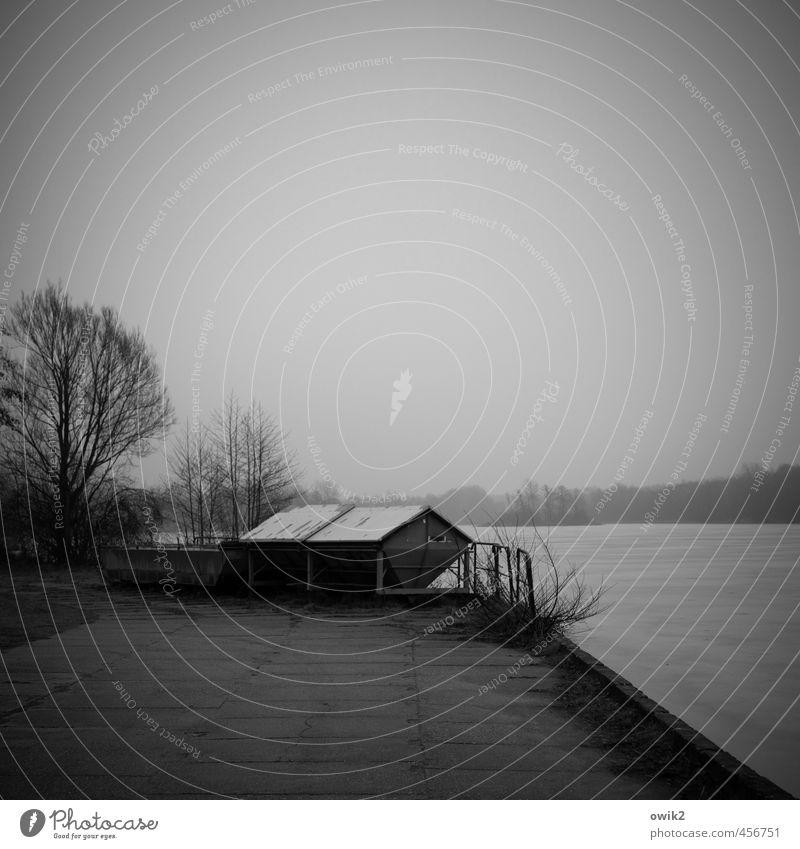 Graue Jahreszeit Technik & Technologie Fischzucht Umwelt Natur Landschaft Pflanze Himmel Horizont Klima Wetter schlechtes Wetter Nebel Eis Frost Baum Sträucher