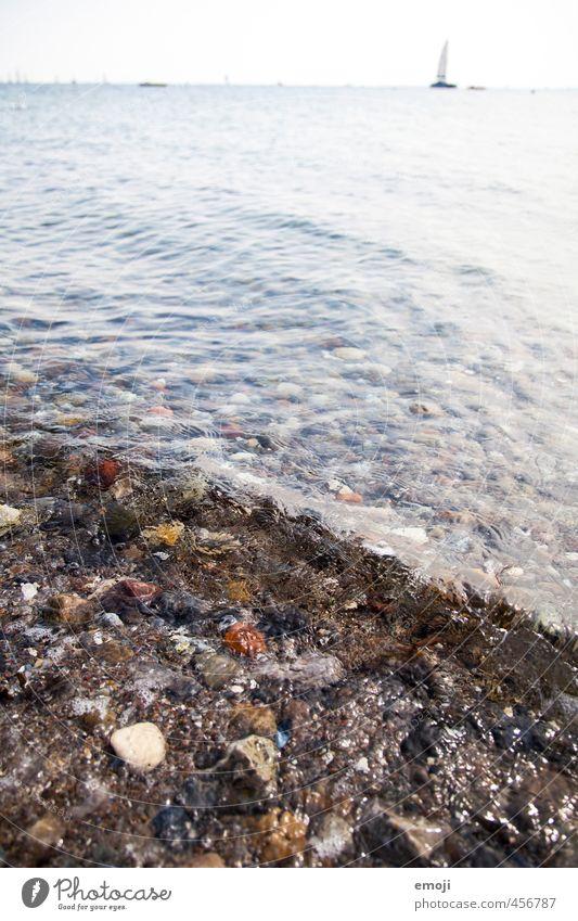 salzig Umwelt Natur Wasser Wellen Küste Ostsee Meer nass natürlich Farbfoto Außenaufnahme Detailaufnahme Menschenleer Tag Schwache Tiefenschärfe