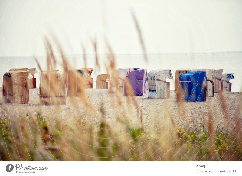 Gruppenkuscheln Himmel Natur schön Meer Landschaft Strand Umwelt frei Sträucher Ostsee kuschlig Strandkorb