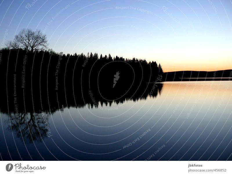 reflection Ferien & Urlaub & Reisen blau Wasser Baum Einsamkeit Landschaft ruhig Ferne Wald schwarz kalt Umwelt Herbst See Zufriedenheit Schönes Wetter