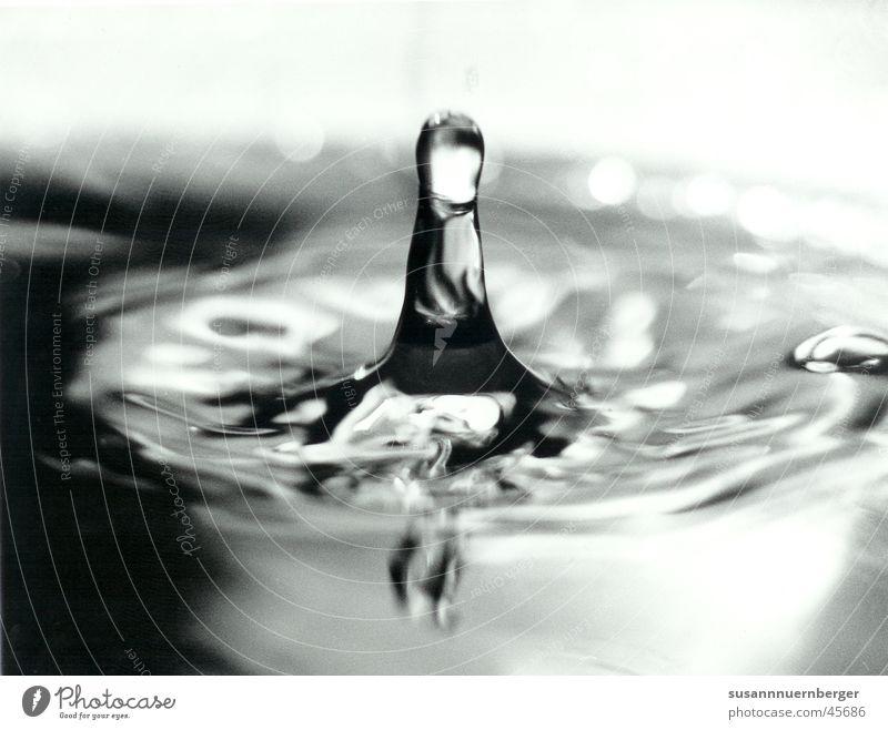 Wassertropfen Momentaufnahme Kollision Nahaufnahme Schwarzweißfoto
