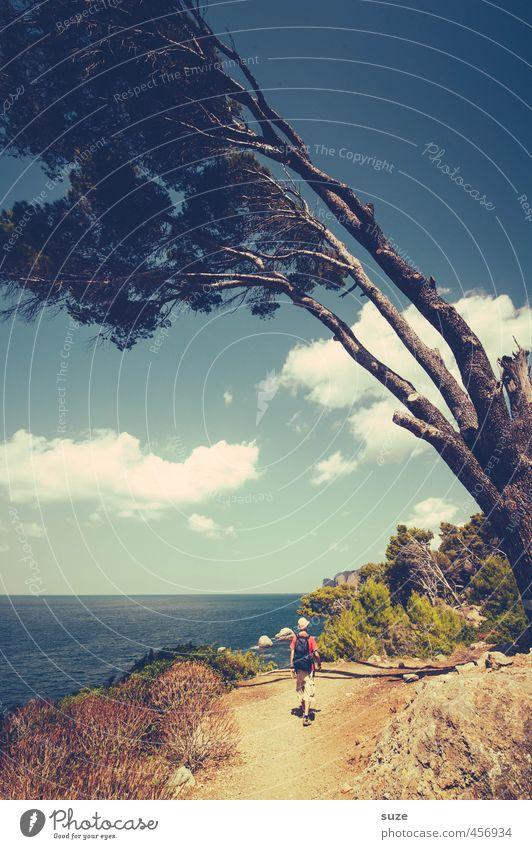 Wahre Größe Mensch Himmel Natur Ferien & Urlaub & Reisen Sommer Baum Meer Landschaft Reisefotografie Wege & Pfade Küste Freizeit & Hobby Idylle Wind wandern
