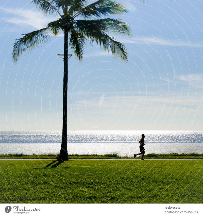 run in the blazing sun Fitness Sport-Training Joggen Mann Schönes Wetter Wärme Palme Wiese Küste Pazifik laufen exotisch frei Gelassenheit Ausdauer