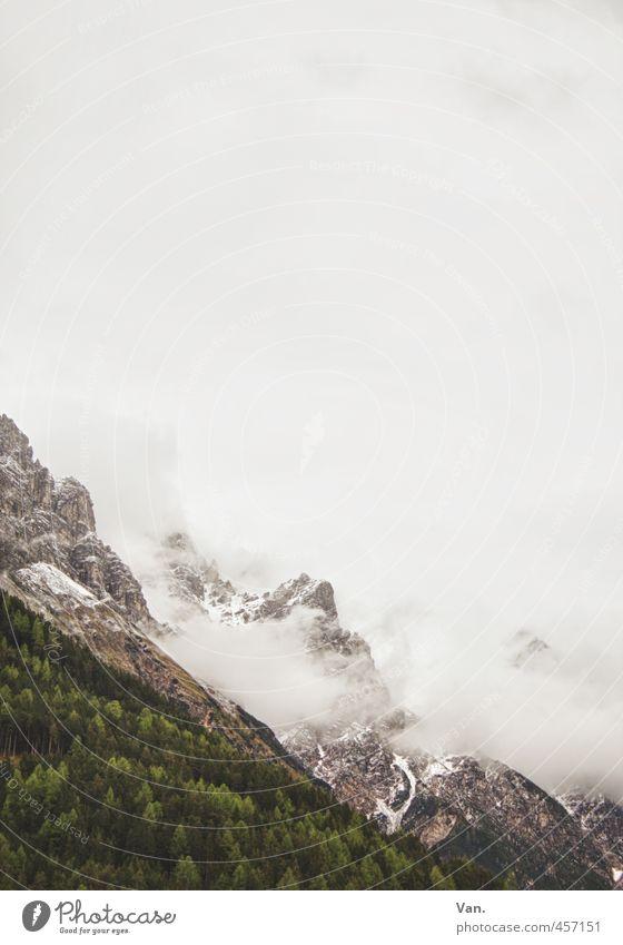 Zuckerwatteberge Himmel Natur Pflanze grün Baum Landschaft Wolken Wald kalt Berge u. Gebirge Schnee Felsen Nebel Alpen schlechtes Wetter