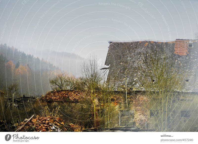 nebelruine | mauer Landschaft Herbst Nebel Wald Hügel Berge u. Gebirge Muldental Dorf Haus Ruine Bauwerk Gebäude Mauer Wand alt Vergänglichkeit Zerstörung