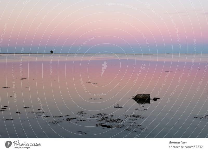 Vollromantik ;) Natur Ferien & Urlaub & Reisen Wasser Sommer Meer ruhig Strand Ferne Küste Luft Stimmung rosa Erde Schönes Wetter Insel Urelemente