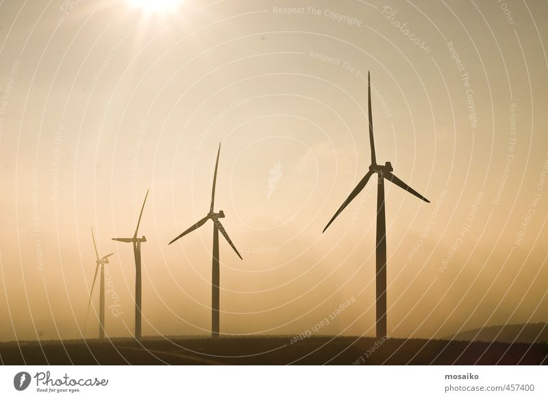 Himmel grün Sonne gelb Umwelt natürlich Metall Wind stehen Energie Technik & Technologie Sauberkeit Industrie Mast alternativ elektrisch