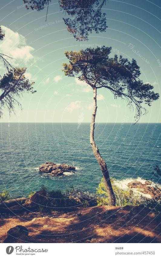 Kiefer Sutherland JR. Natur Ferien & Urlaub & Reisen Sommer Baum Meer Einsamkeit Landschaft Umwelt Küste Erde Idylle Wachstum Aussicht fantastisch Spanien Bucht