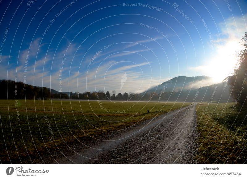 stille - hörst du? Ferien & Urlaub & Reisen Ausflug Freiheit wandern Umwelt Landschaft Himmel Sonnenlicht Herbst Baum Gras Sträucher Feld Wald Hügel Gefühle