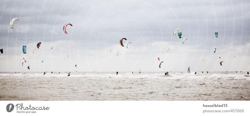 Steifer Wind Mensch Jugendliche Ferien & Urlaub & Reisen Wasser Sommer Sonne Meer Freude Strand Leben Sport Glück Gesundheit Wetter Wellen Wind