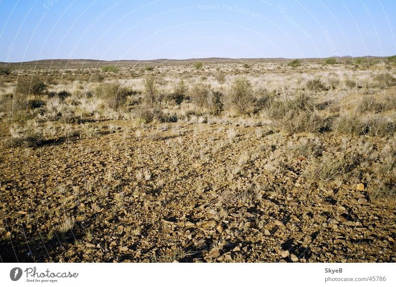 Karoo Great Karoo Südafrika Wüste Desert Garden Route