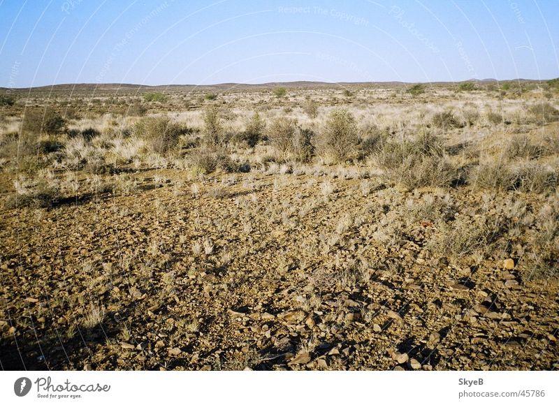 Karoo Wüste Südafrika Great Karoo