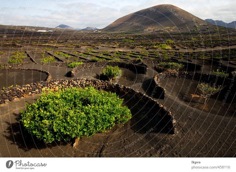 Himmel Natur Ferien & Urlaub & Reisen grün Pflanze Landschaft schwarz Berge u. Gebirge Straße Stein Sand Felsen Arbeit & Erwerbstätigkeit Wellen dreckig Wind
