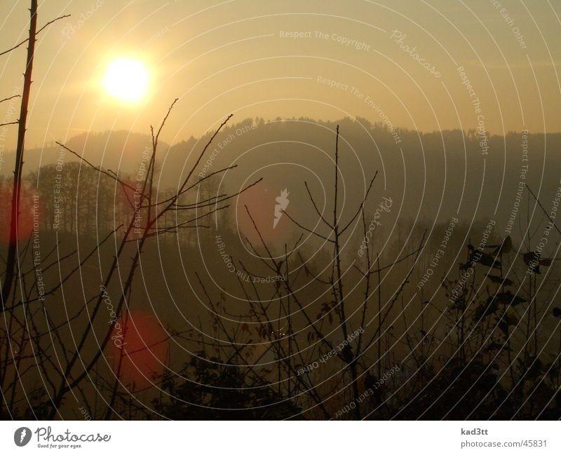 Sonnenuntergang Schwarzwald Hügel Herbst Berge u. Gebirge Abend