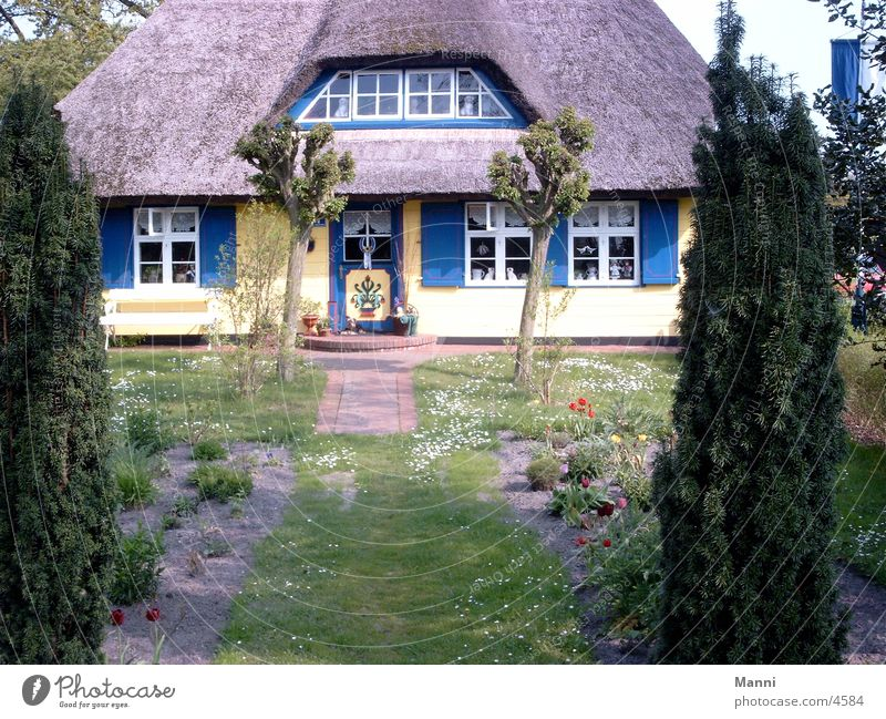 Reetdachhaus Architektur Haus