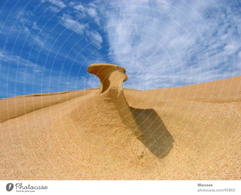 Sand Struktur Meer Neuseeland 90 Mile Beach