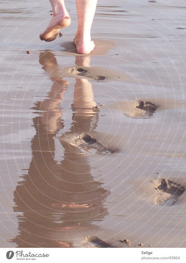 Der Weg Meer Strand wandern Fußspur Wasser Sand Spuren Barfuß