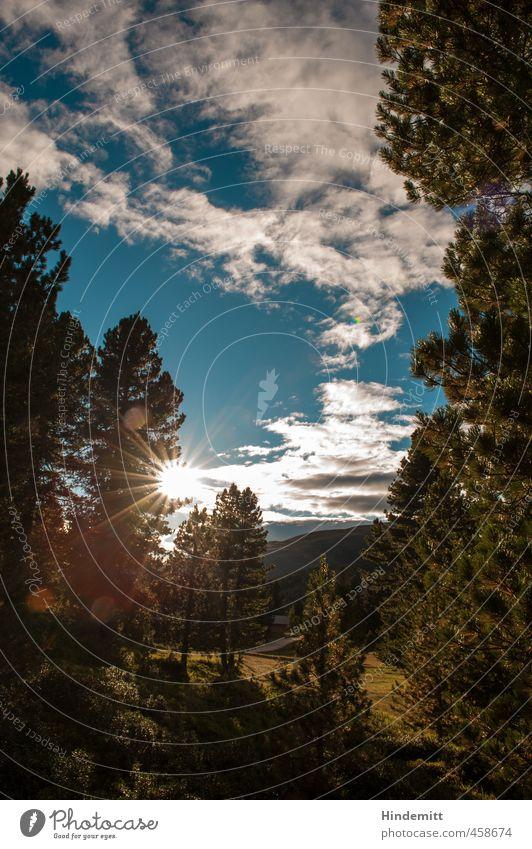 Am Würzjoch Himmel Natur Ferien & Urlaub & Reisen blau grün weiß Sommer Baum Erholung Einsamkeit Wolken Wald Umwelt Berge u. Gebirge Wiese Gras