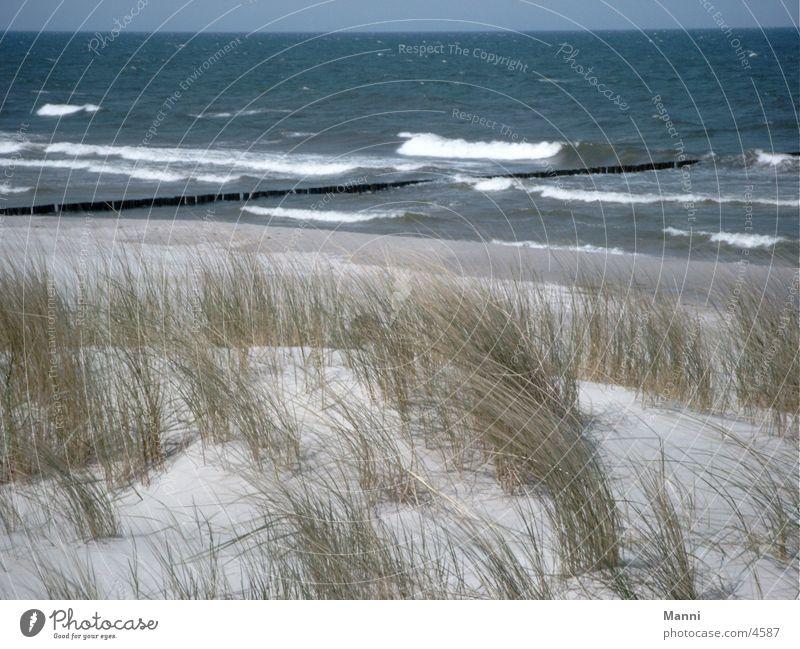 Meer Stranddüne