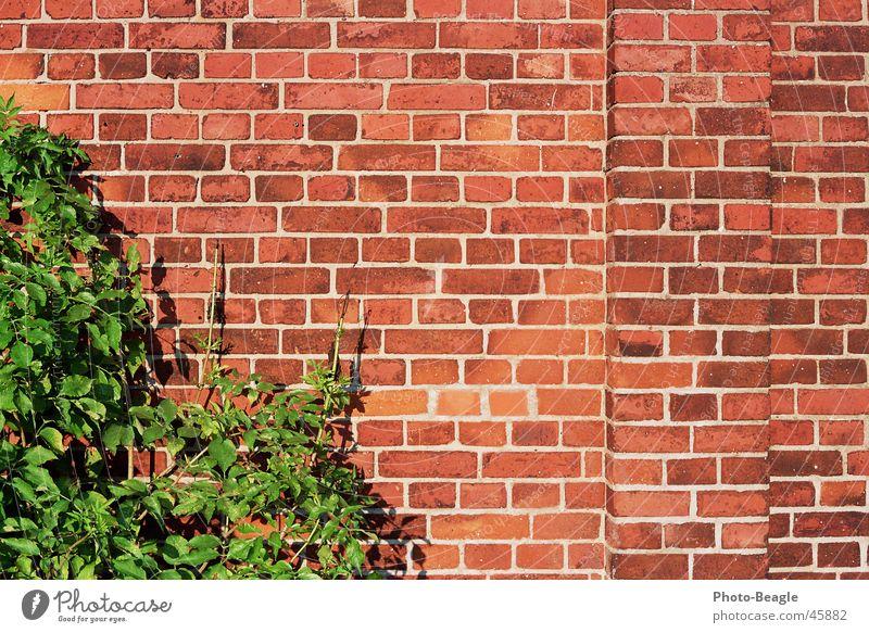 Ziegel 4-4 Wand Stein Mauer Hintergrundbild Backstein