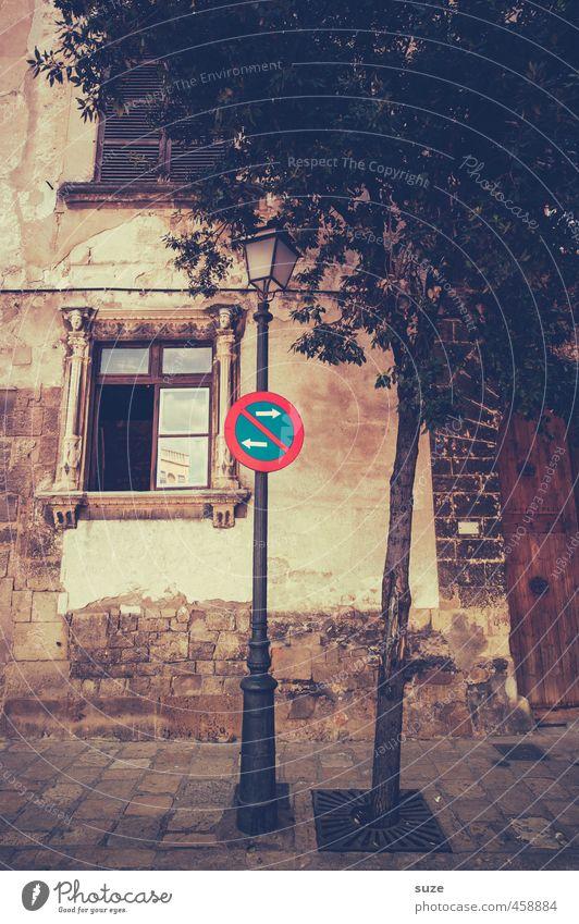 Weder noch Stadt Baum Haus Fenster Straße Wärme Wand Architektur Wege & Pfade Gebäude Mauer Fassade Häusliches Leben Tür Fußweg historisch