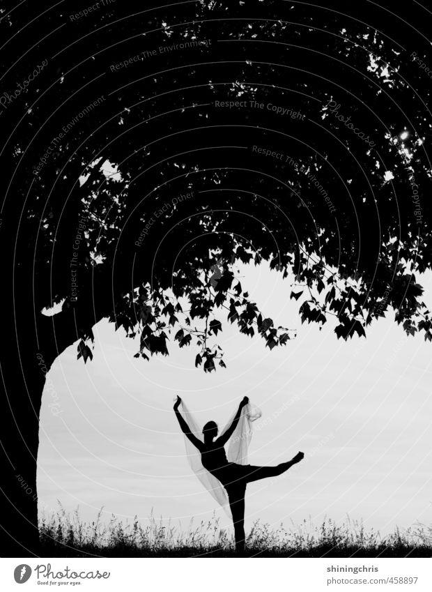 schattenspiel Mensch Jugendliche Baum Blatt Erwachsene 18-30 Jahre feminin Gras Freiheit Park Kraft Tanzen stehen Energie Fitness Leidenschaft