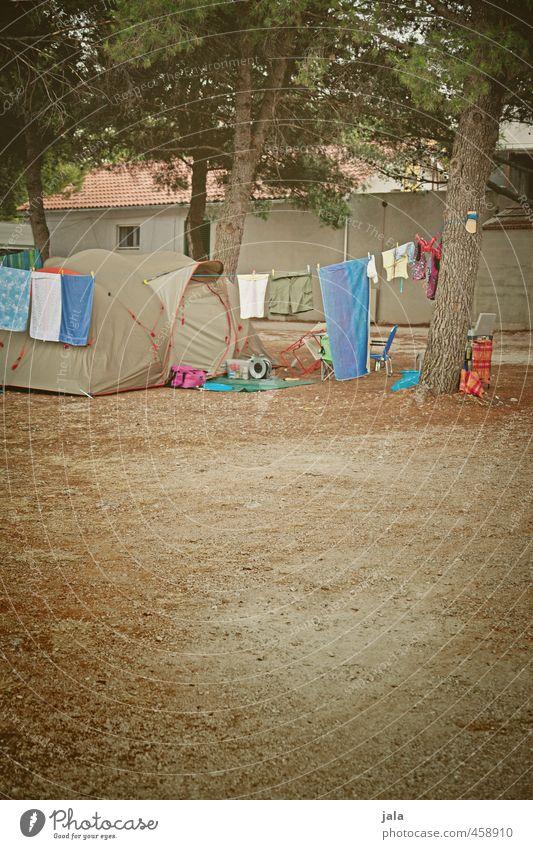 camping Ferien & Urlaub & Reisen Freiheit Camping Sommerurlaub Pflanze Baum Zeltlager wild Freude Farbfoto Außenaufnahme Menschenleer Textfreiraum unten
