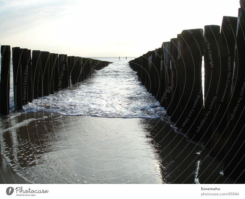 Stop the water Strand Säule Holz schäumen nass Meer See Wasserfahrzeug braun gelb Sand Hafen Sonne Himmel blau hell mud wet ship harbour sun heaven blue brown