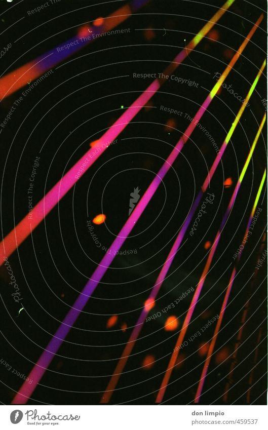 led + schafe Fassade leuchten fantastisch trendy mehrfarbig schwarz Kitsch modern Leuchtdiode analog Farbfoto Außenaufnahme Nahaufnahme Experiment Menschenleer