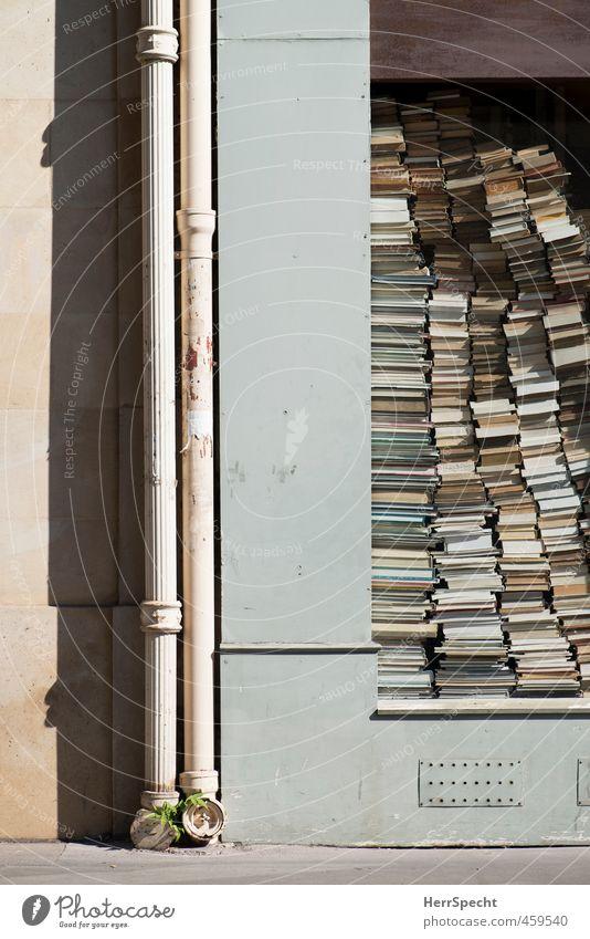 Hochstapelei alt Stadt Wand lustig Mauer Gebäude außergewöhnlich trist Dekoration & Verzierung Buch verrückt Papier verstecken Frankreich Paris eckig