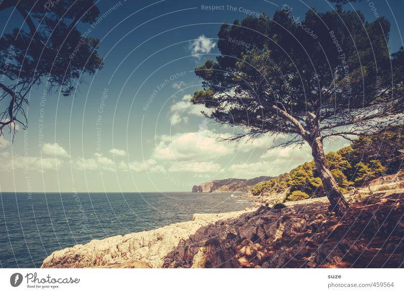 Verweile doch du bist so schön ... Ferien & Urlaub & Reisen Sommer Meer Umwelt Natur Landschaft Erde Himmel Wolken Horizont Wärme Baum Küste Bucht Fernweh