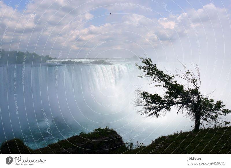 the falls Umwelt Natur Landschaft Urelemente Wasser Himmel Wolken Horizont Sommer Baum Schlucht Flussufer Wasserfall Niagara Fälle Niagara River Aggression