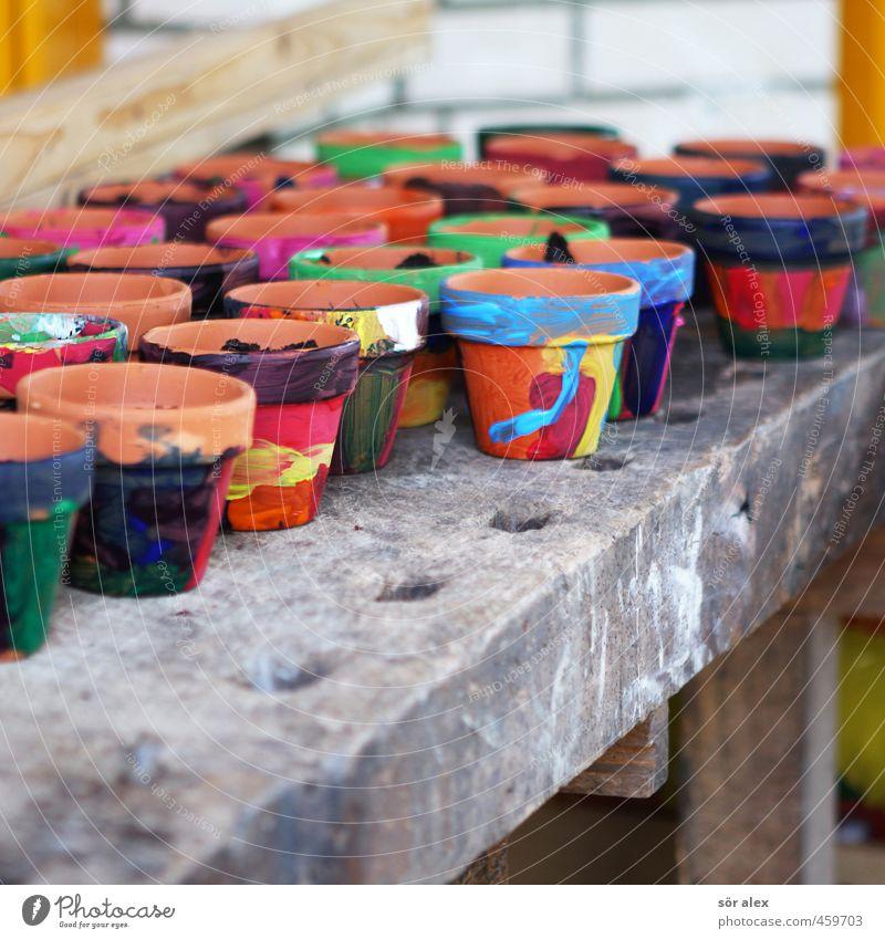 Einpflanzen Kindererziehung Bildung Kindergarten Schule Kindergärtnerin Grundschule Frühling Blumentopf Tontopf schön blau mehrfarbig gelb grün orange rot