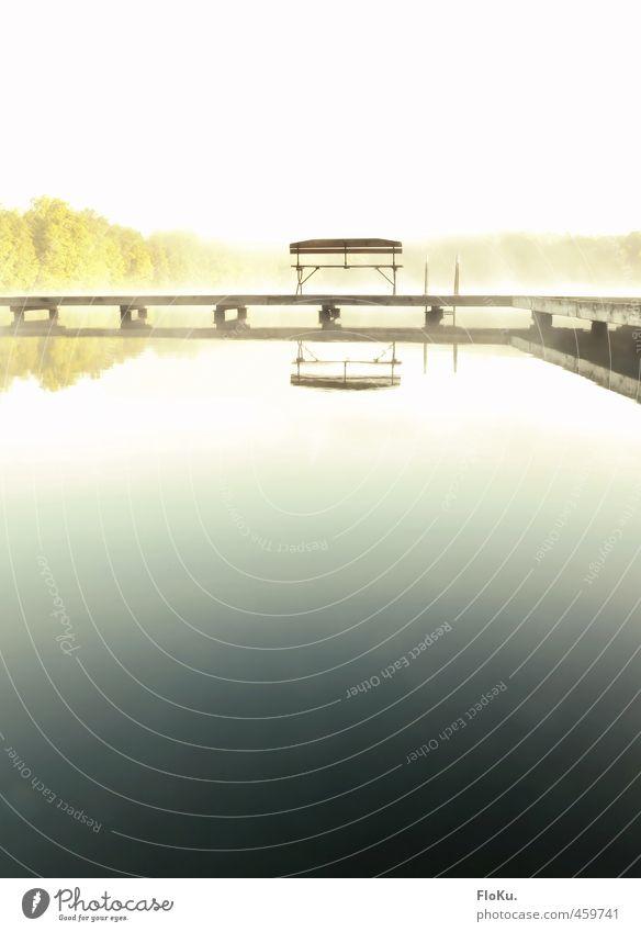 in eine andere Welt Ferien & Urlaub & Reisen Ausflug Ferne Umwelt Natur Wasser Sonnenaufgang Sonnenuntergang Sommer Nebel Küste Seeufer weich blau weiß Bank